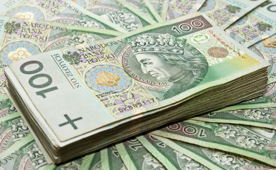 Cena kooikerhondje w Polsce